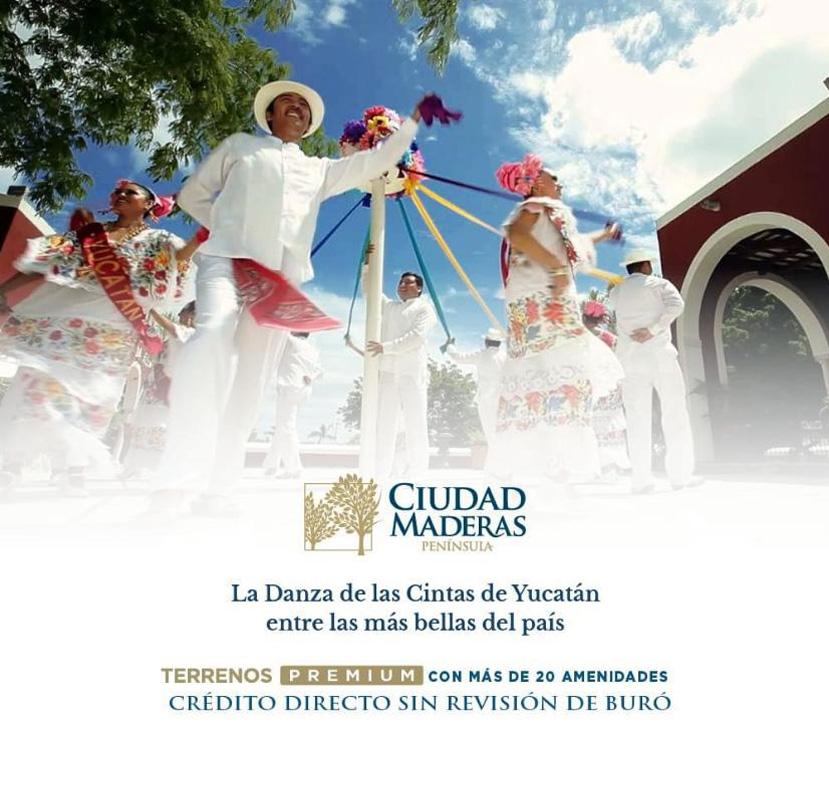 Ciudad Maderas