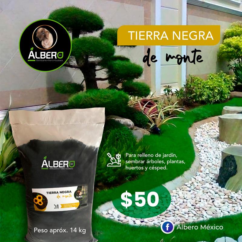 albero-tierra-de-monte-14kg-