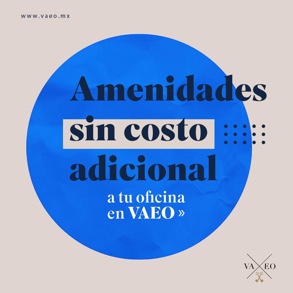 vaeo-05